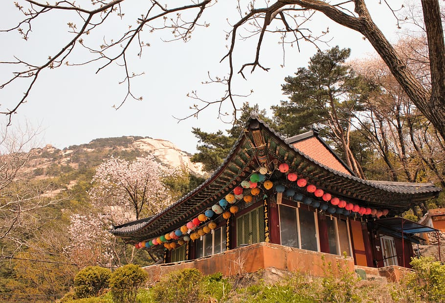 traditional-temple-bukhansan-south-korea-korea