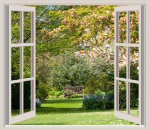 spring-garden-window-frame-view